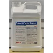 brandt_flash_dance
